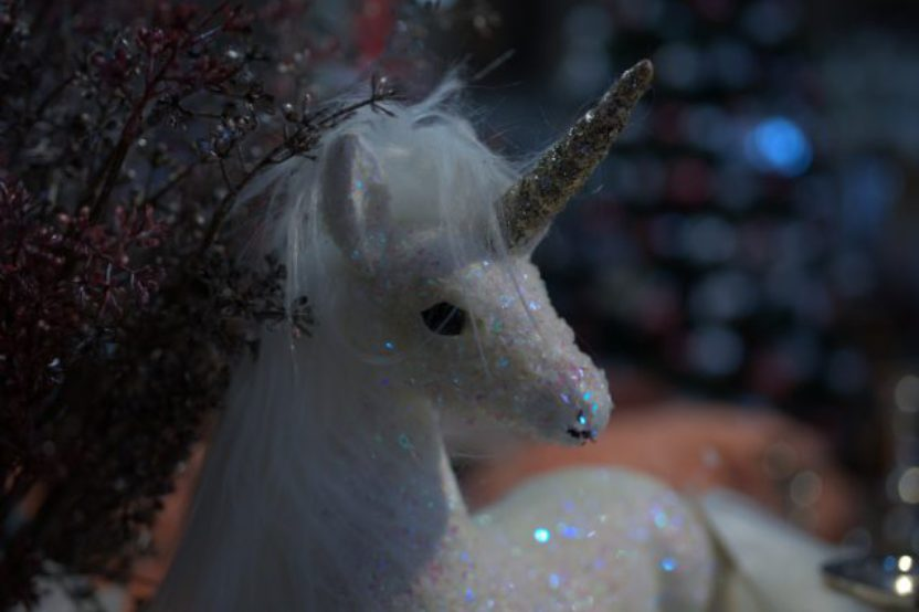 Are Unicorns Real Animals? – Unicorn Sightings And Findings