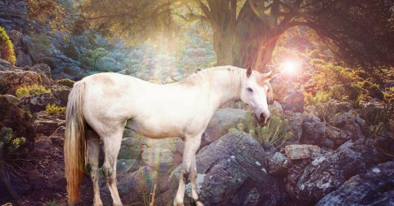 What Is a Unicorn Horn? – The Magical Powers of Unicorn Horn