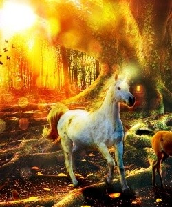 What Do Unicorns Do for Fun? - Unicorn Running in a Forest
