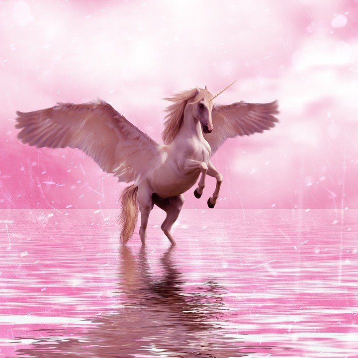 a winged unicorn mounting on water
