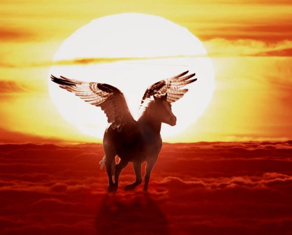 Is Pegasus A Unicorn? – Let´s Ask A Pegasus!