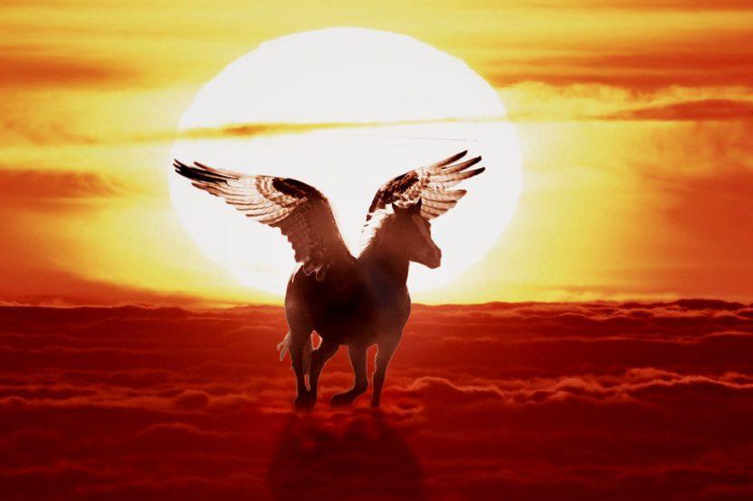 Is Pegasus A Unicorn? – Let´s Ask A Pegasus!
