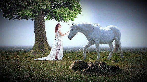 Unicorn Training - Unicorn and Princess