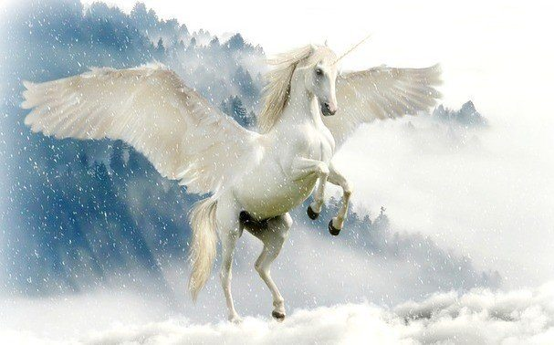 Best Unicorn Names - Winged Unicorn