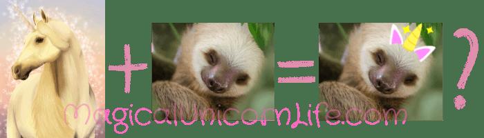 What Is a Slothicorn - Unicorn Sloth and Slothicorn