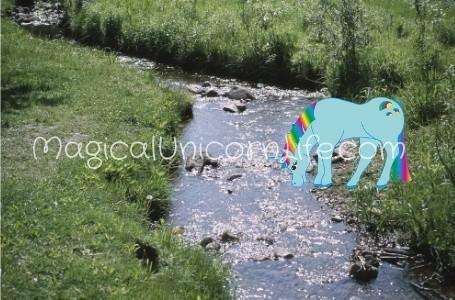 a rainbow unicorn drinks from a stream