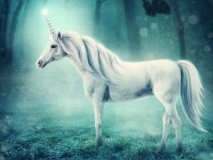 Unicorn Oracle Cards - Unicorns in Forest