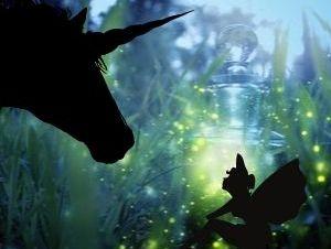 Beautiful Unicorn Pictures - Unicorn and Fairy