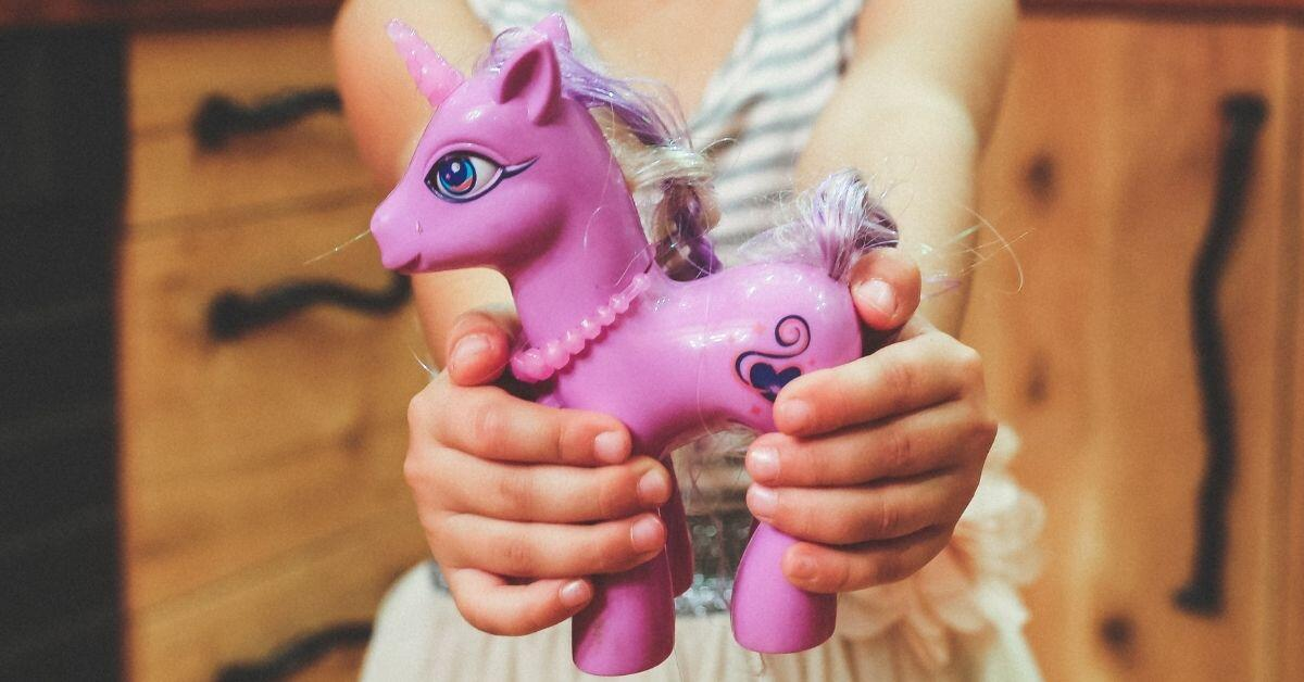 Am I Unicorn Pegasus or Earth Pony - Girl Holding My Little Pony Toy