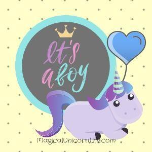 Do Unicorns Have Gender - It's a Boy Unicorn