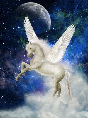Pegasus Names - Pegasus in Space