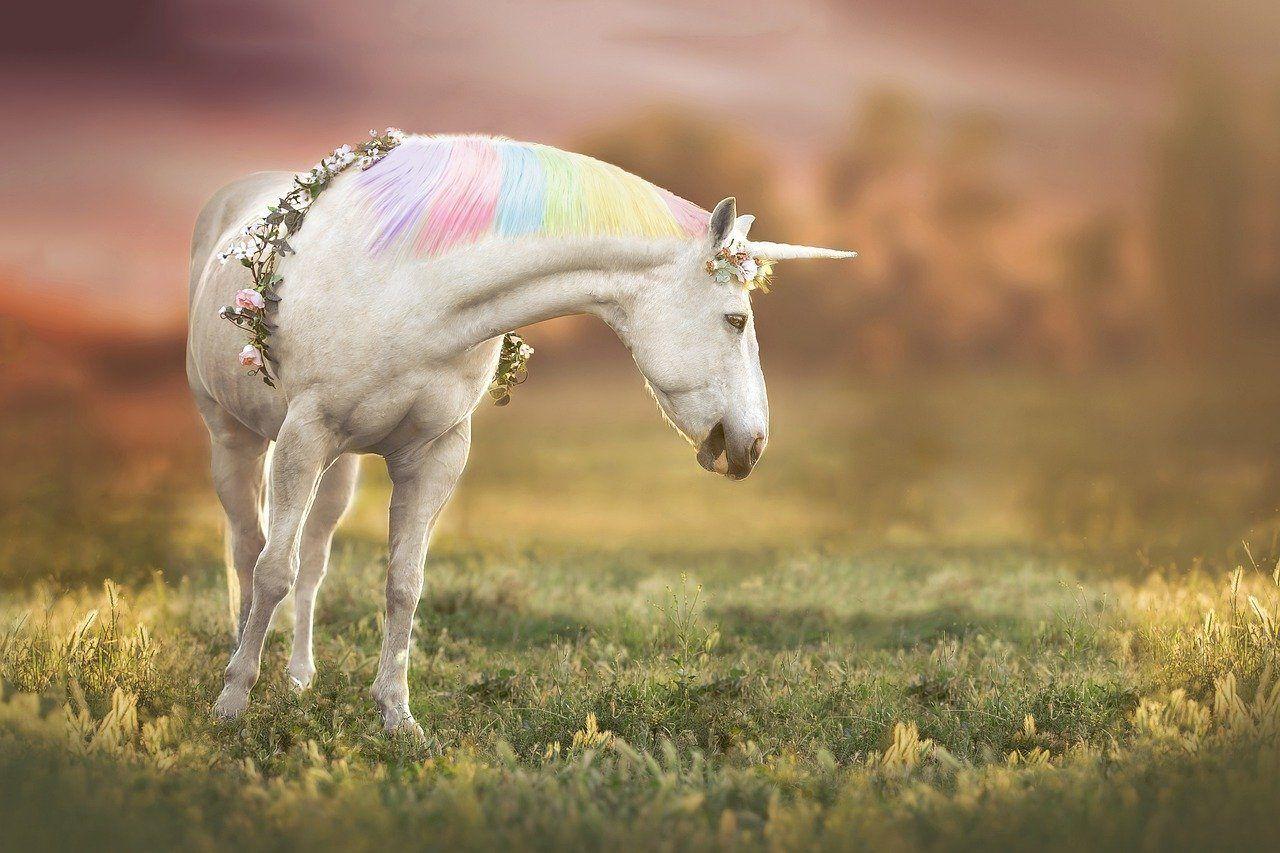 Magical Unicorn Life - A White Unicorn