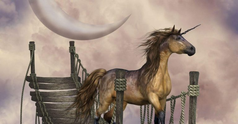 Unicorn Poems to Inspire You