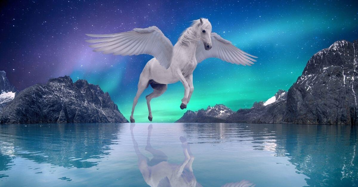 What Is My Pegasus Name