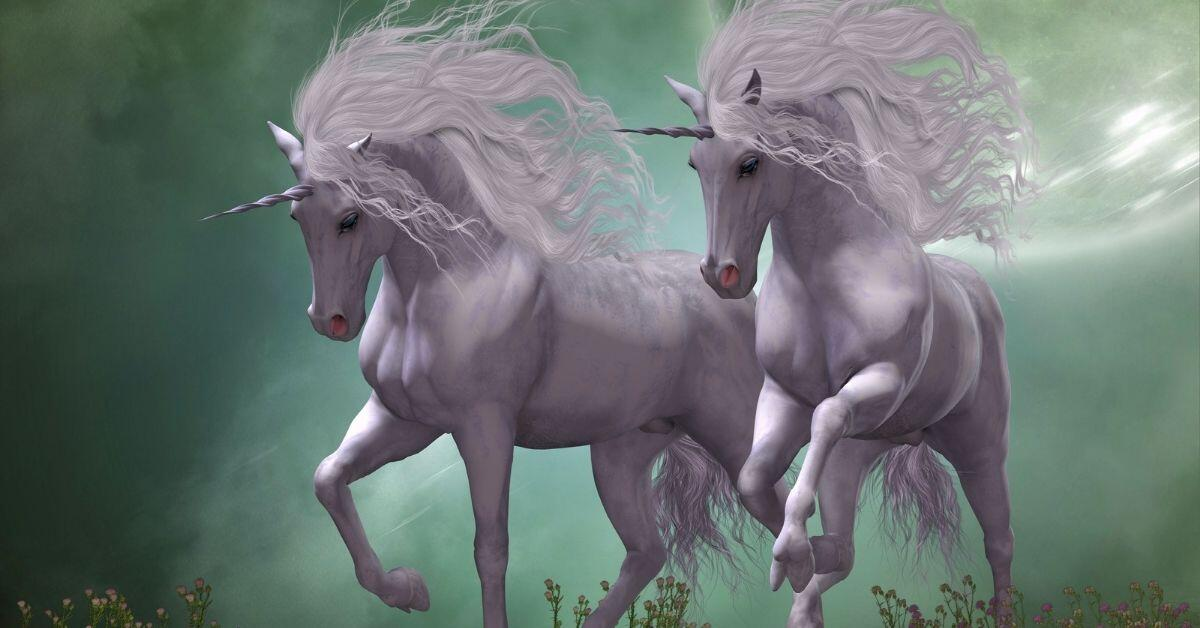Beautiful Unicorn Pictures - Two Unicorns Side by Side