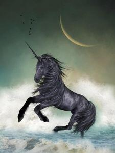 Black Unicorn by Moonlight