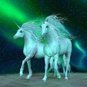 Two Unicorns and Northern Lights