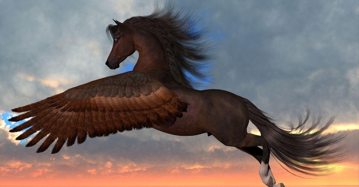 Beatiful Pegasus Pictures