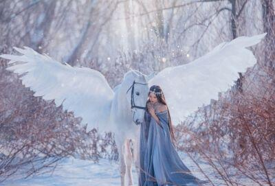 Pegasus and Princess